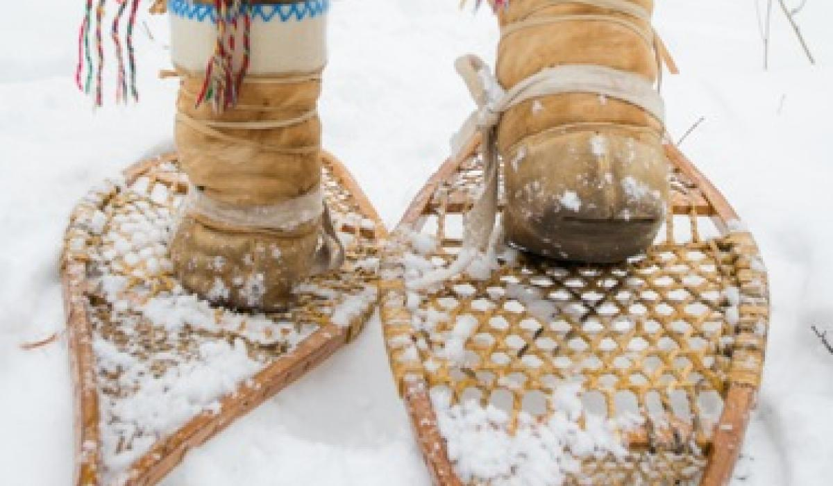 snowshoes, snowshoeing, winter travel