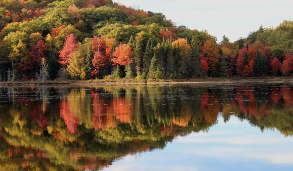 Autumn in the Haliburton Highlands