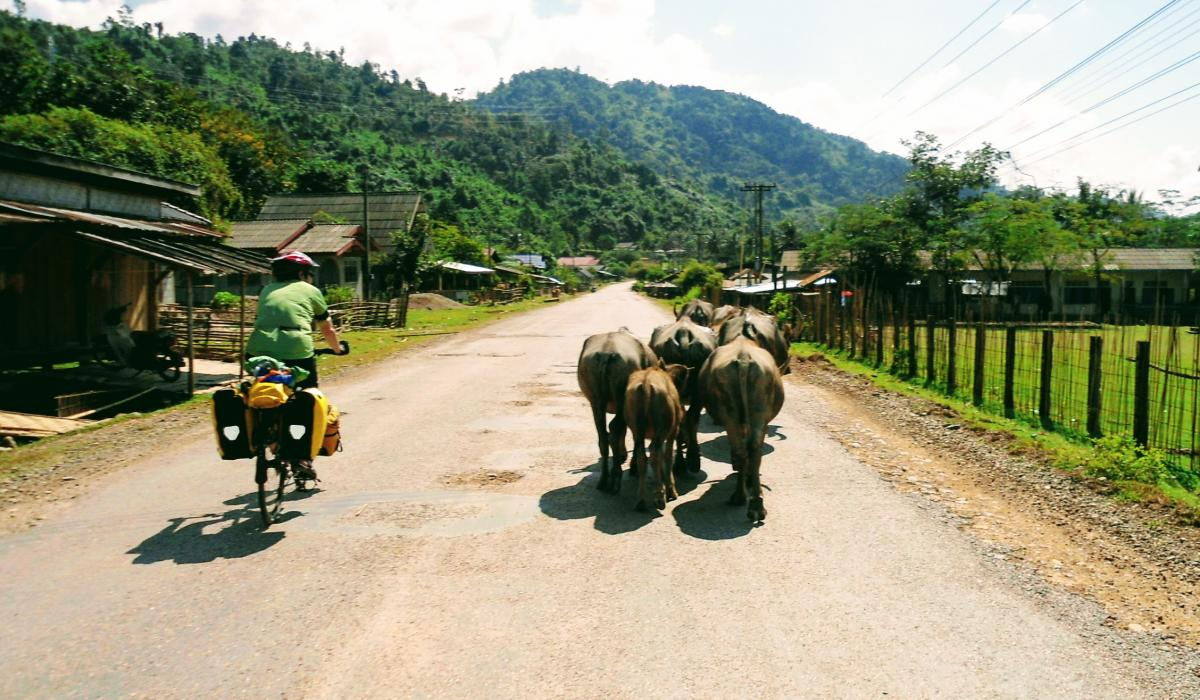 travel southeast asia storytelling