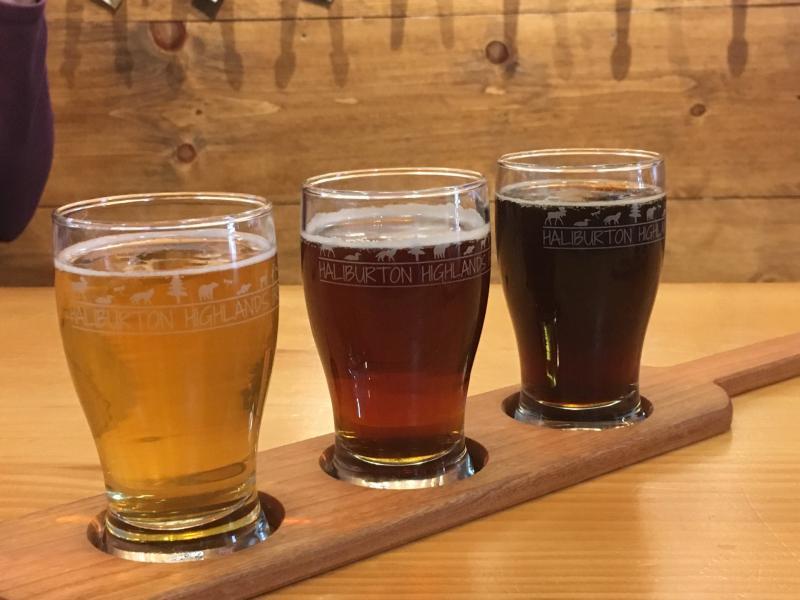 Beer samples at Haliburton Highlands Brewing